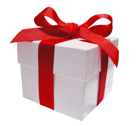 Our special gift to you - free financial planner